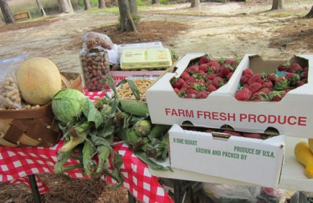 Fresh produce from Shalotte Farmers Market in Brunswick County