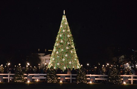 a picture of a Christmas tree at with the lights on